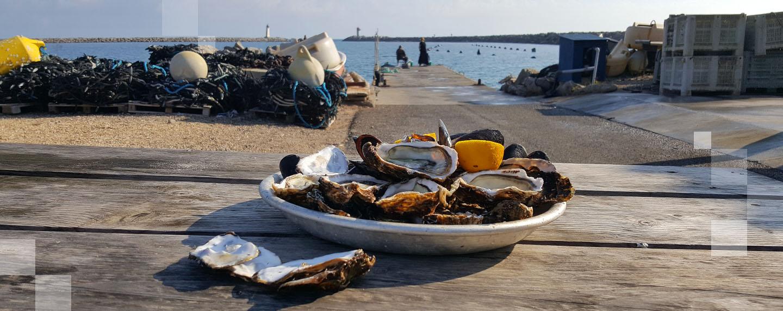 Destinations marines et culinaires :  pour savourer de vrais poissons d'avril !