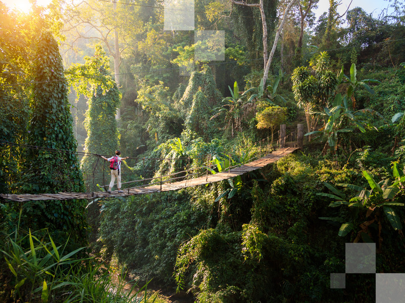 Randonnez dans la campagne verdoyante en Thaïlande