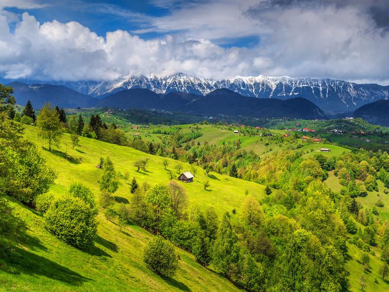 Magnifique paysage en Transylvanie en Roumanie: De verts pâturages sur fond de montagne enneigées