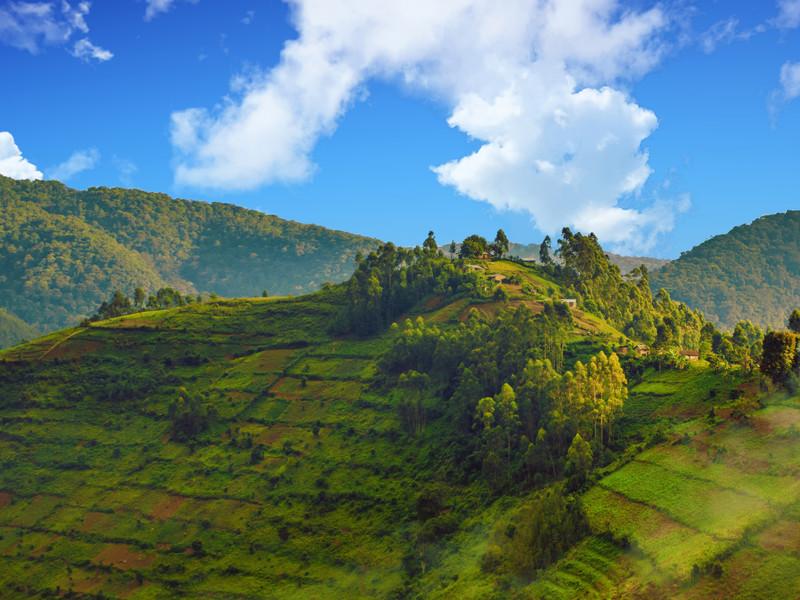 Colline verte et boisée au Rwanda, une destination méconnue et insolite pour vos vacances d'été