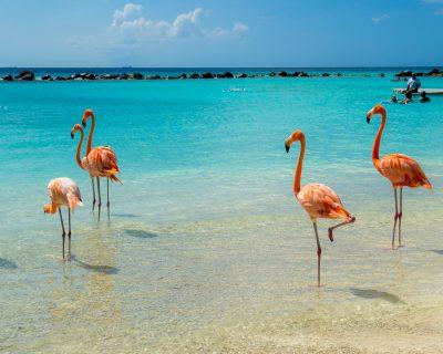 5 destinations ensoleillées à découvrir quand les voyages reprendront