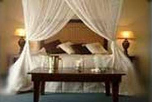 Ingwe Manor - Margate - Chambre